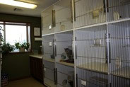 Boarding Kennel, Bartlesville Animal Hospital